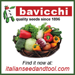 Italian Seed